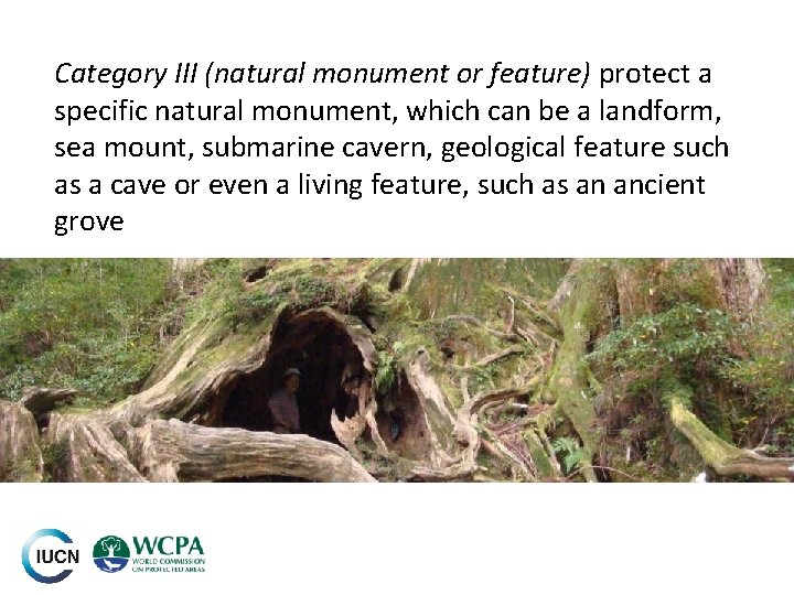 Category III (natural monument or feature) protect a specific natural monument, which can be