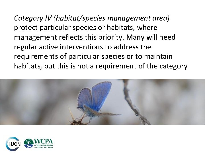 Category IV (habitat/species management area) protect particular species or habitats, where management reflects this
