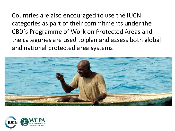 Countries are also encouraged to use the IUCN categories as part of their commitments