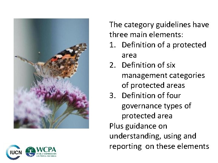 The category guidelines have three main elements: 1. Definition of a protected area 2.