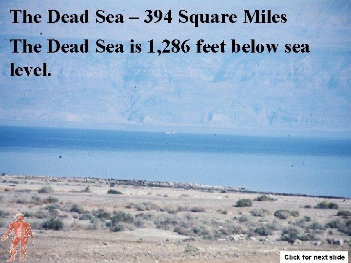 The Dead Sea – 394 Square Miles The Dead Sea is 1, 286 feet