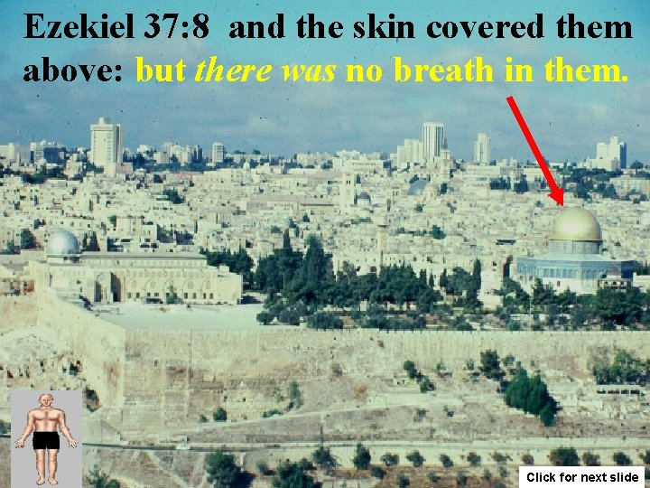 Ezekiel 37: 8 and the skin covered them above: but there was no breath
