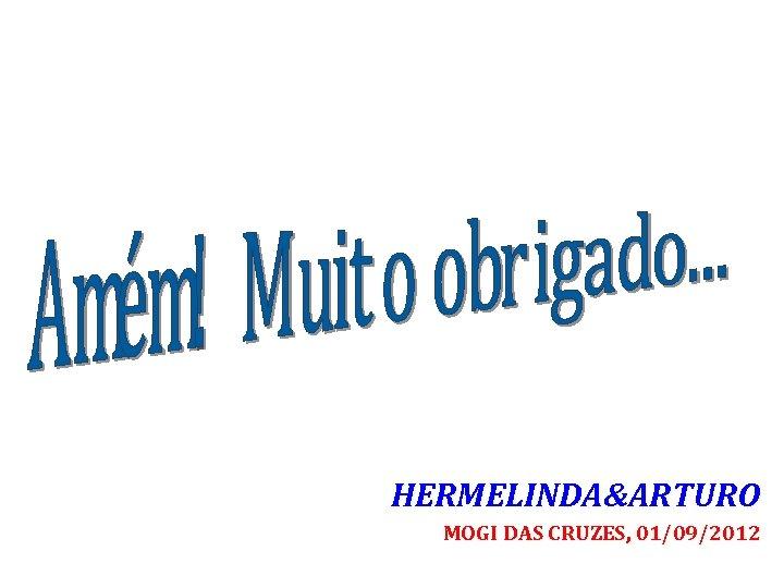 HERMELINDA&ARTURO MOGI DAS CRUZES, 01/09/2012