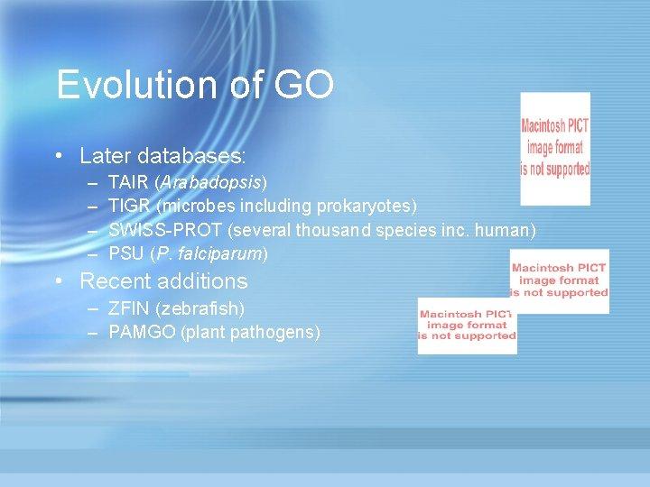 Evolution of GO • Later databases: – – TAIR (Arabadopsis) TIGR (microbes including prokaryotes)