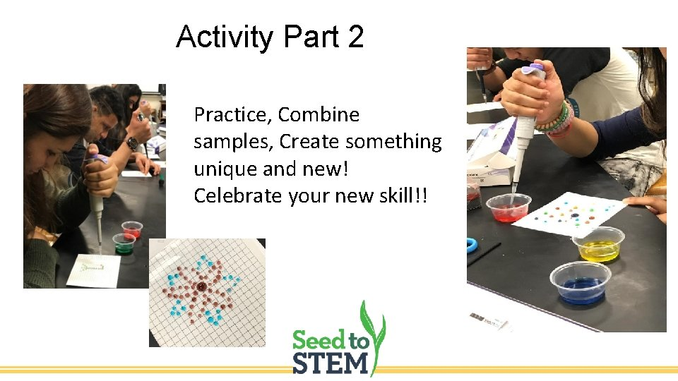 Activity Part 2 Practice, Combine samples, Create something unique and new! Celebrate your new