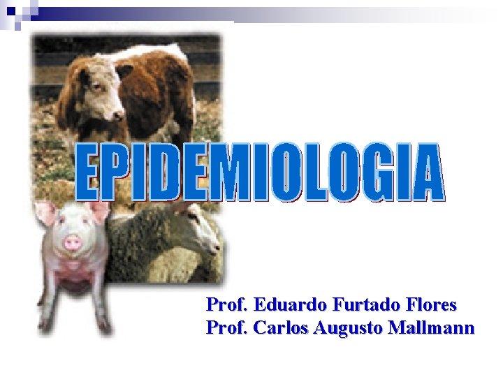 Prof. Eduardo Furtado Flores Prof. Carlos Augusto Mallmann