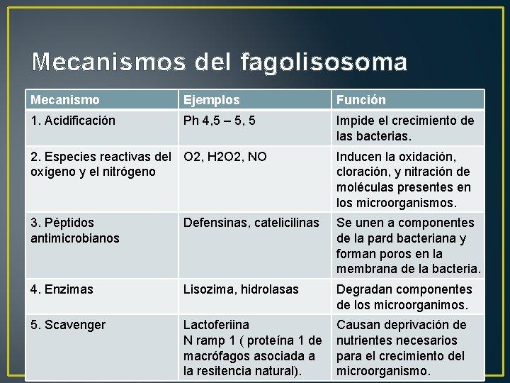 Mecanismos del fagolisosoma Mecanismo Ejemplos Función 1. Acidificación Ph 4, 5 – 5, 5