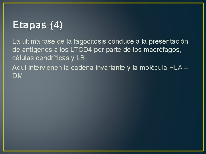 Etapas (4) La última fase de la fagocitosis conduce a la presentación de antígenos