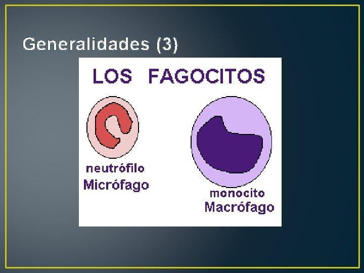 Generalidades (3)