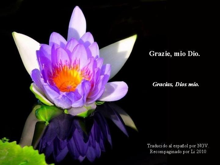 Grazie, mio Dio. Gracias, Dios mío. Traducido al español por NGV. Recompaginado por Li