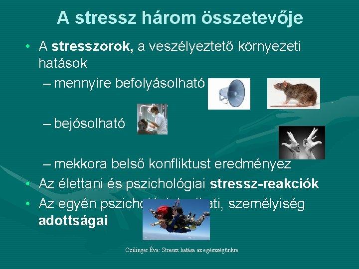 A stressz élettani hatásai
