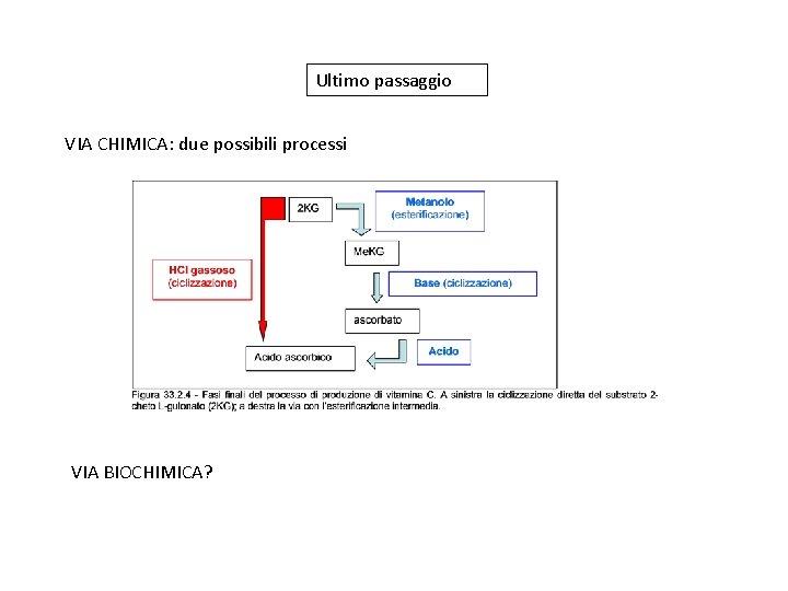 Ultimo passaggio VIA CHIMICA: due possibili processi VIA BIOCHIMICA?