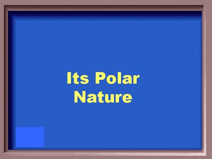 Its Polar Nature