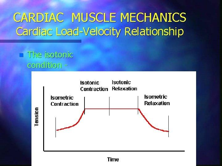 CARDIAC MUSCLE MECHANICS Cardiac Load-Velocity Relationship n The isotonic condition -