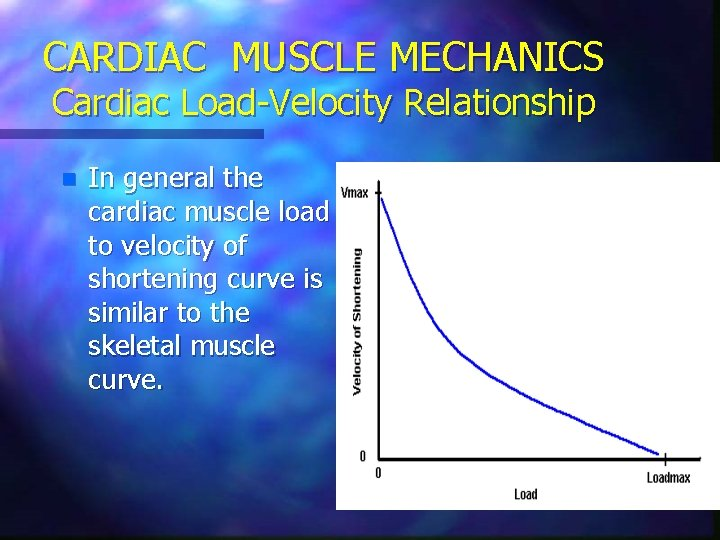 CARDIAC MUSCLE MECHANICS Cardiac Load-Velocity Relationship n In general the cardiac muscle load to