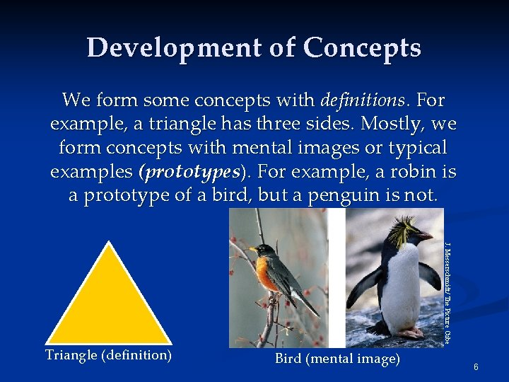 Development of Concepts We form some concepts with definitions. For example, a triangle has