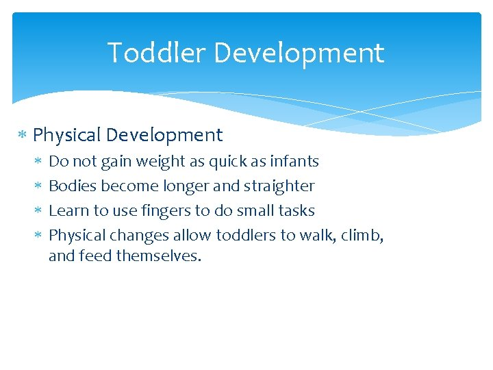 Toddler Development Physical Development Do not gain weight as quick as infants Bodies become