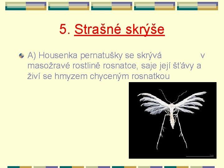 5. Strašné skrýše A) Housenka pernatušky se skrývá v masožravé rostlině rosnatce, saje její