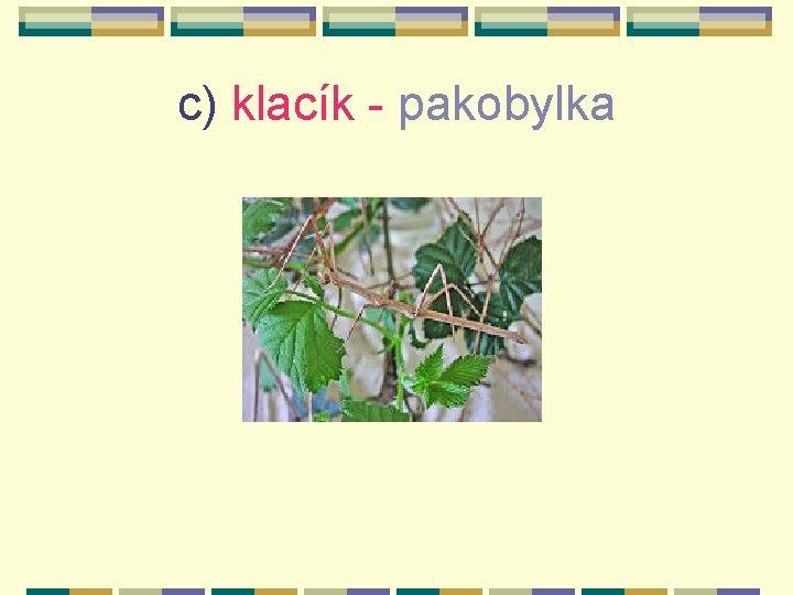 c) klacík - pakobylka