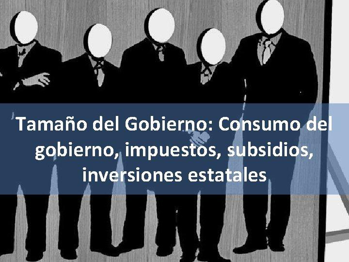 Tamaño del Gobierno: Consumo del gobierno, impuestos, subsidios, inversiones estatales