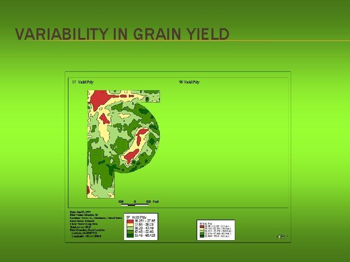 VARIABILITY IN GRAIN YIELD