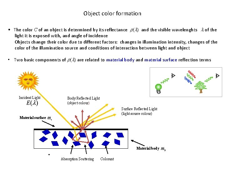 Object color formation • The color C of an object is determined by its