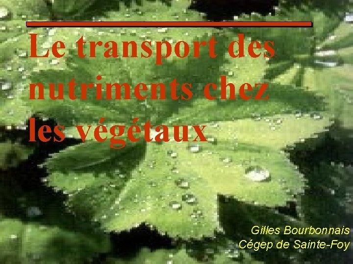 Le transport des nutriments chez les végétaux Gilles Bourbonnais Cégep de Sainte-Foy