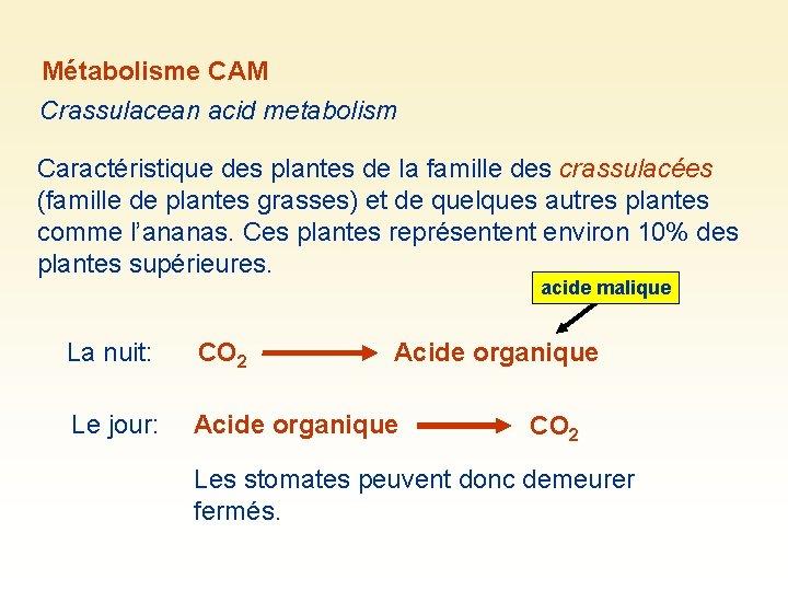 Métabolisme CAM Crassulacean acid metabolism Caractéristique des plantes de la famille des crassulacées (famille