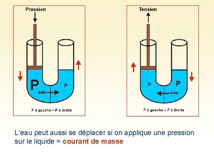 L'eau peut aussi se déplacer si on applique une pression sur le liquide =