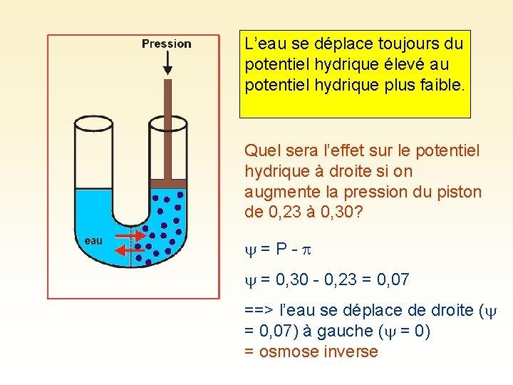 L'eau se déplace toujours du potentiel hydrique élevé au potentiel hydrique plus faible. Quel