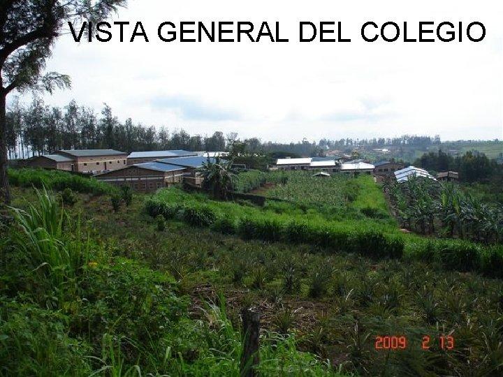VISTA GENERAL DEL COLEGIO