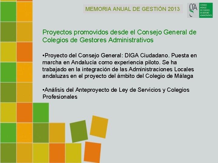 MEMORIA ANUAL DE GESTIÓN 2013 Proyectos promovidos desde el Consejo General de Colegios de