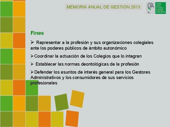 MEMORIA ANUAL DE GESTIÓN 2013 Fines Ø Representar a la profesión y sus organizaciones