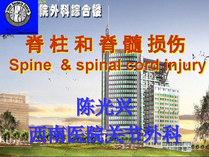 Spine & spinal cord injur 脊 柱 和 脊 髓 损伤 Spine & spinal