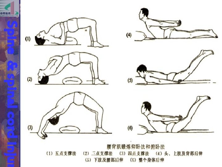 Spine & spinal cord injur