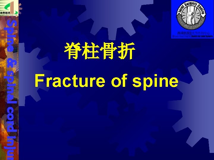 Fracture of spine Spine & spinal cord injur 脊柱骨折
