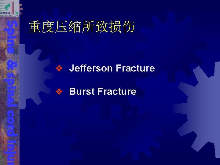 Spine & spinal cord injur 重度压缩所致损伤 v Jefferson Fracture v Burst Fracture