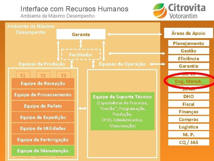 Interface com Recursos Humanos Ambiente de Máximo Desempenho Áreas de Apoio Gerente Informações Facilitador