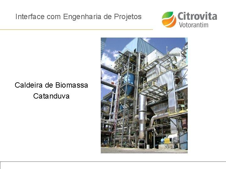 Interface com Engenharia de Projetos Caldeira de Biomassa Catanduva Título da apresentação | Janeiro