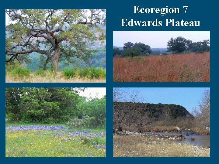 Ecoregion 7 Edwards Plateau