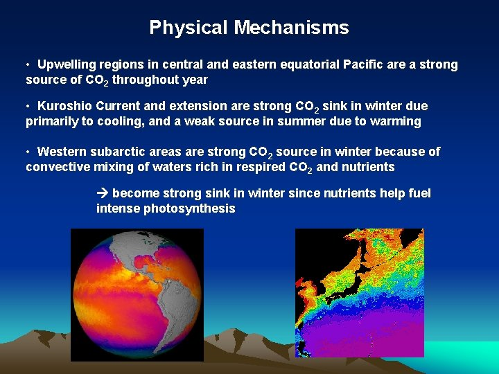 Physical Mechanisms • Upwelling regions in central and eastern equatorial Pacific are a strong