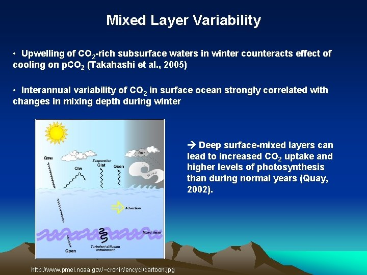 Mixed Layer Variability • Upwelling of CO 2 rich subsurface waters in winter counteracts