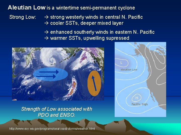 Aleutian Low is a wintertime semi permanent cyclone Strong Low: strong westerly winds in