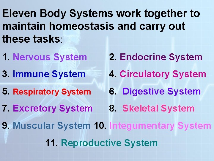 Eleven Body Systems work together to maintain homeostasis and carry out these tasks: 1.