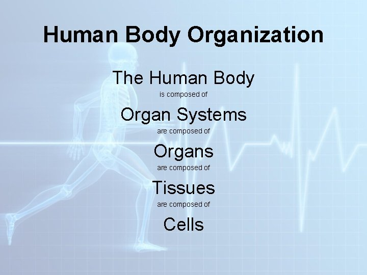 Human Body Organization The Human Body is composed of Organ Systems are composed of