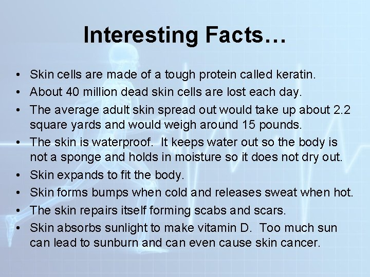 Interesting Facts… • Skin cells are made of a tough protein called keratin. •