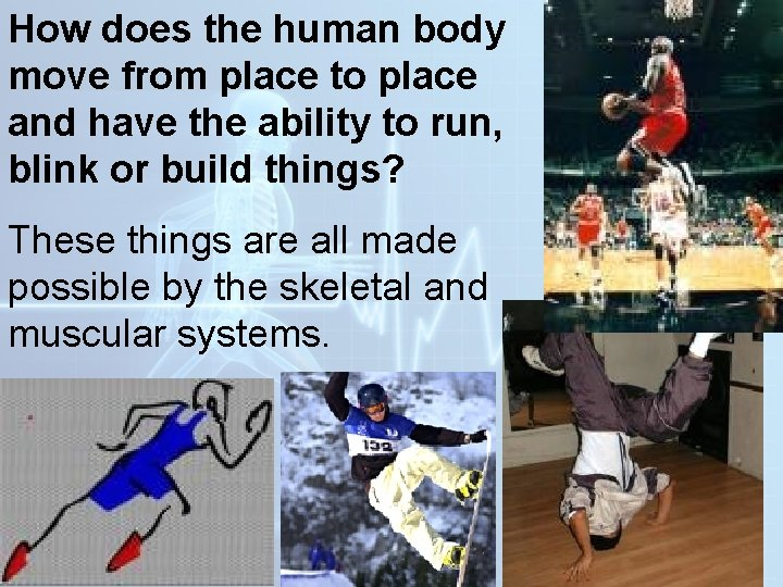 How does the human body move from place to place and have the ability