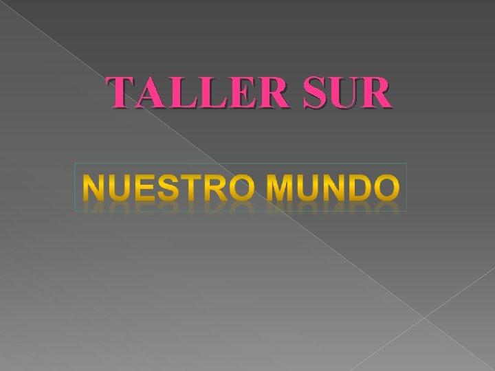 TALLER SUR