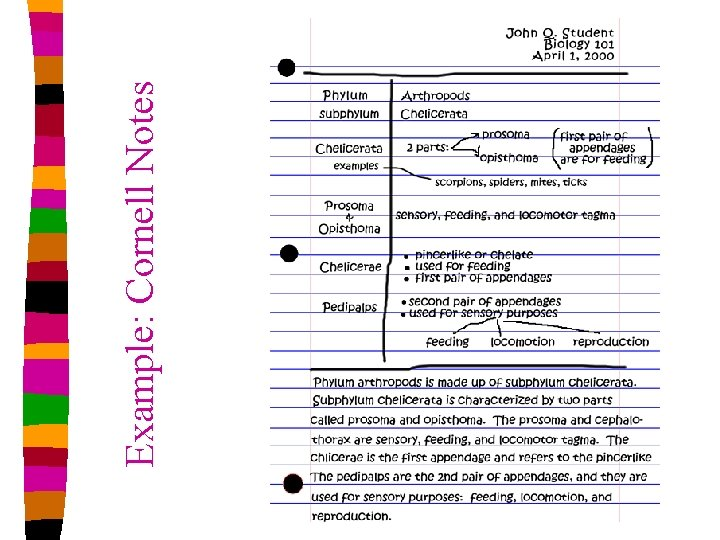 Example: Cornell Notes