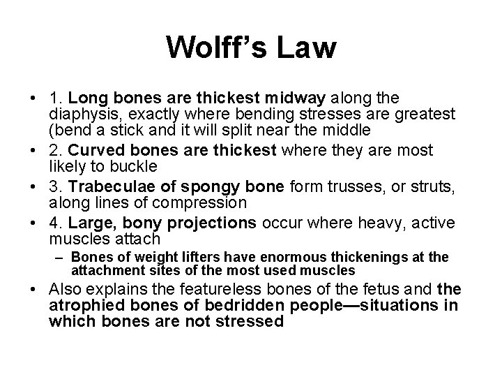 Wolff's Law • 1. Long bones are thickest midway along the diaphysis, exactly where